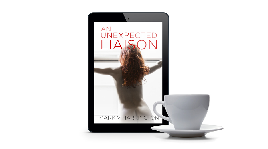 """Unexpected Liaison"" eBook Cover  